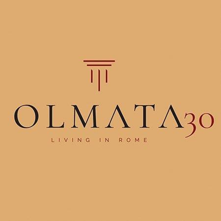 Olmata30 Logo